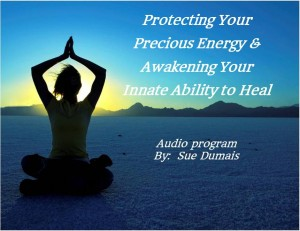 protectingenergyprogram